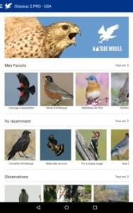 Oiseaux Pro